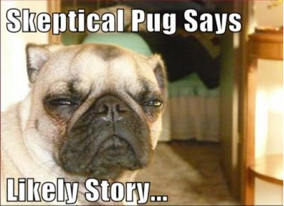 #Blog ~ My Son, The Statistic Excerpt~ I don&#39;t even think the pug bought what I was selling. #Parenthood #parenting #motherhood #momlife  http:// withangelswingsepilogue.blogspot.com/2016/03/my-son -statistic.html &nbsp; … <br>http://pic.twitter.com/FyFO9EtEZU