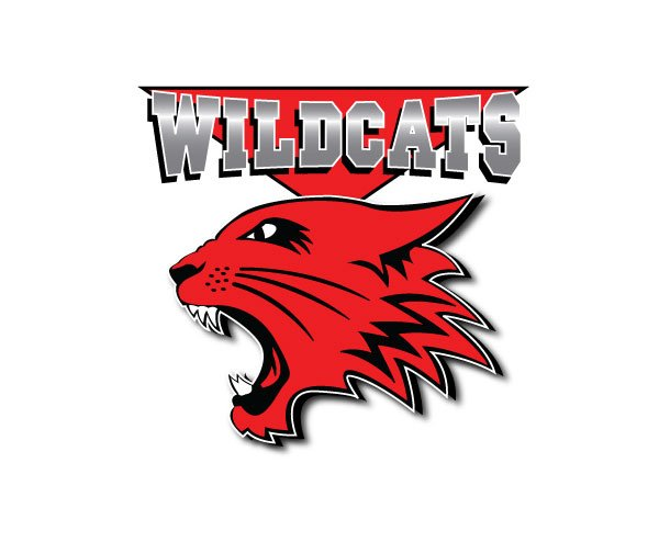 Calling all #Wildcats! A nationwide casting search begins today for #HighSchoolMusical4! #HighSchoolMusical #HSM https://t.co/CqE51CfbQQ