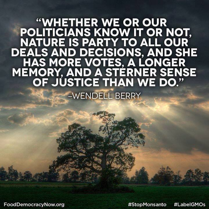 Food for thought for all Senators on AG committee who voted FOR the #DarkAct today. Nature knows.  @food_democracy https://t.co/l6IOYjmP3L