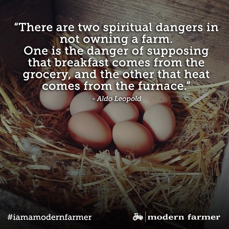 Modern Farmer On Twitter More Quotes Thatll Help You Fall Back In