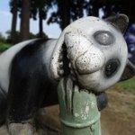 めっちゃ怖いパンダが家の近所にいるのだが...夜には遭遇したくないヤツ