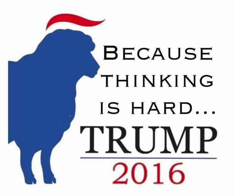 Image result for donald trump presidential campaign, 2016