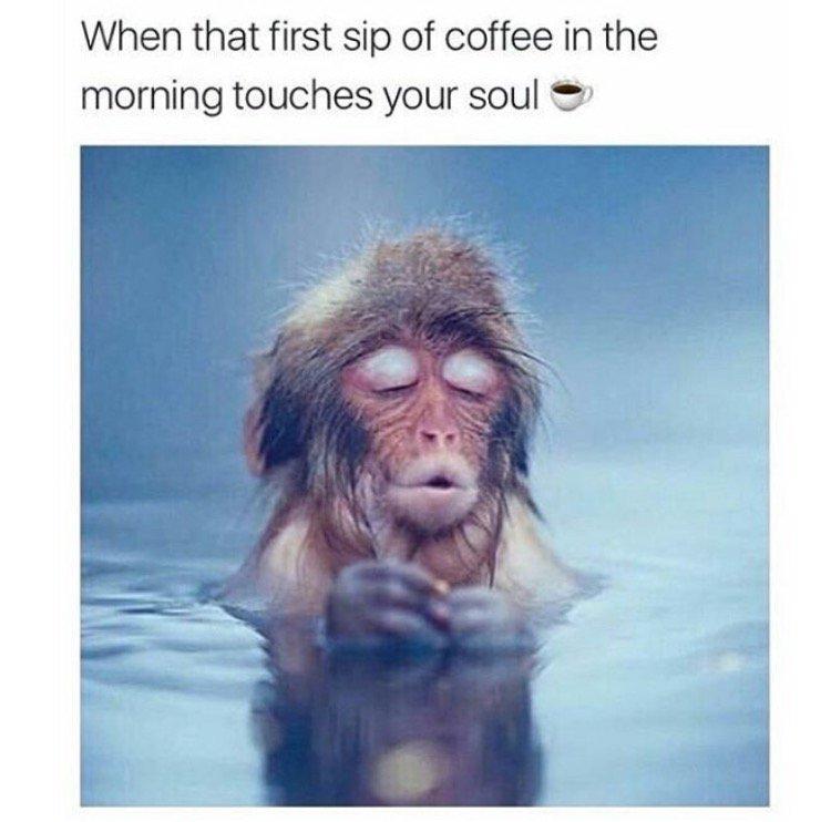 Morning ☕️ https://t.co/PTz3xDNCVv