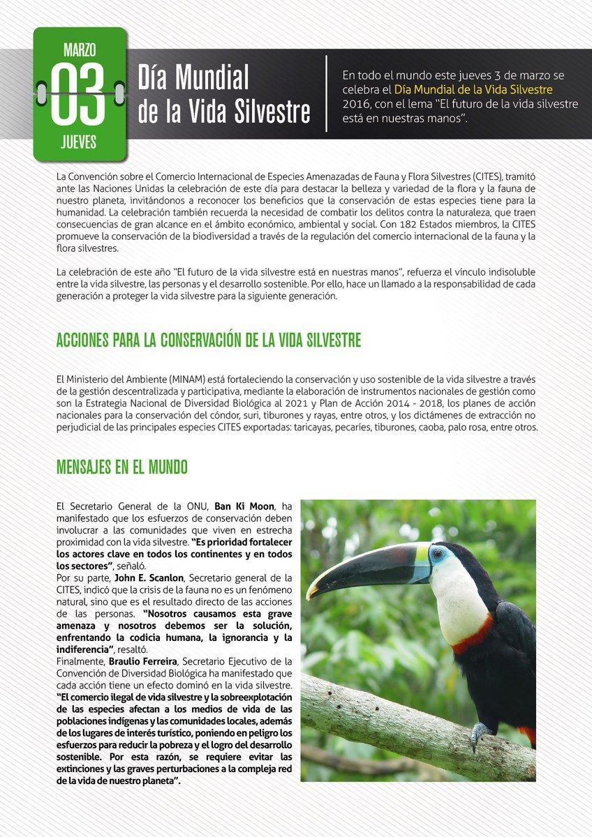 HOY #DíaMundialDeLaVidaSilvestre compartimos esta info sobre la protección de las especies #DiversidadBiológica https://t.co/5nTJwW7D7p