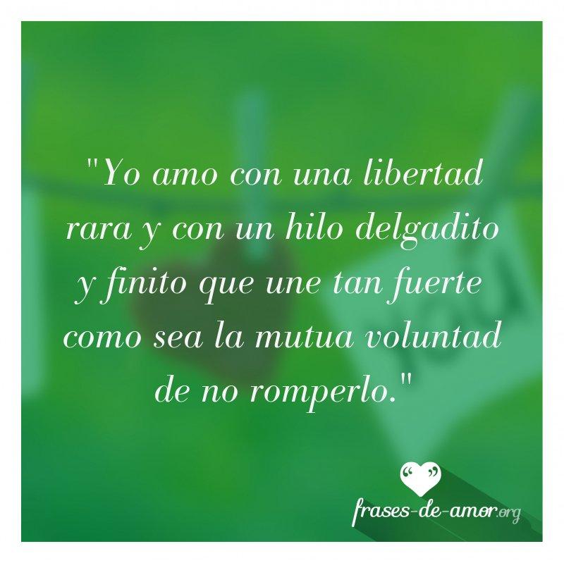 Frases De Amor On Twitter Yo Amo Con Una Libertad Rara Y Con Un