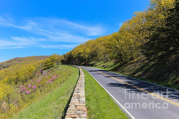 "New artwork for sale! - ""Spring Cruising on Skyline Drive"" - https://t.co/lkeTVtbLqY @fineartamerica https://t.co/VbpDQdOZuu"