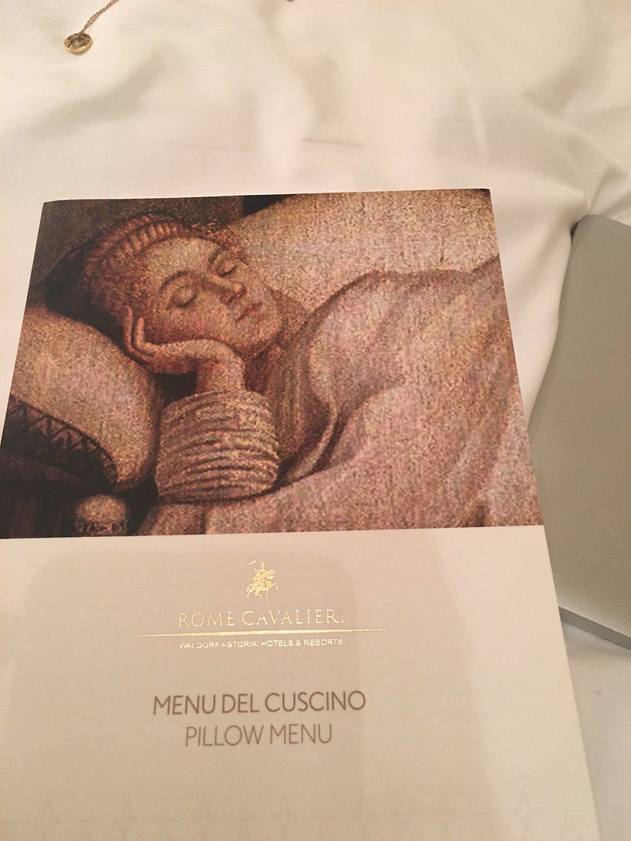 Menu Cuscini.Sylvain Giuliani On Twitter My First Hotel With A Pillow