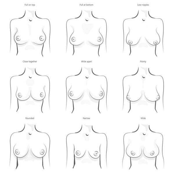 and of sizes shapes breasts different