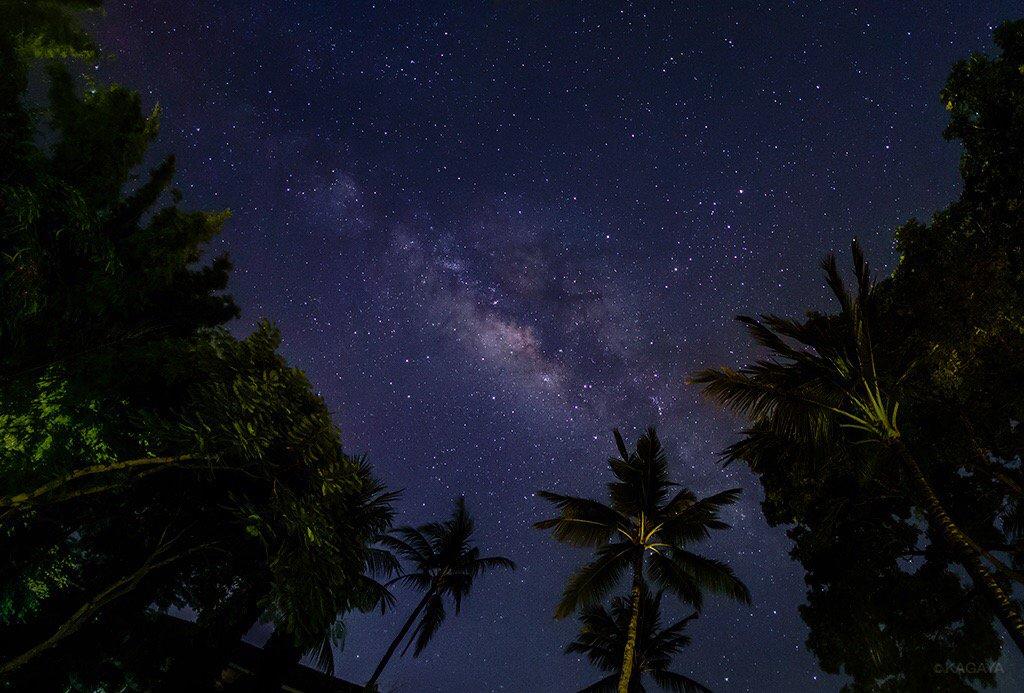 バリ島の天の川。赤道近くに位置するこの島では、天の川の最も明るい部分(いて座付近)が空高く昇ります。そろそろ夜明けが近く、鳥たちが鳴き始めました。(昨日撮影、本日はスラウェシ島におります) pic.twitter.com/FXW1Saaz5W