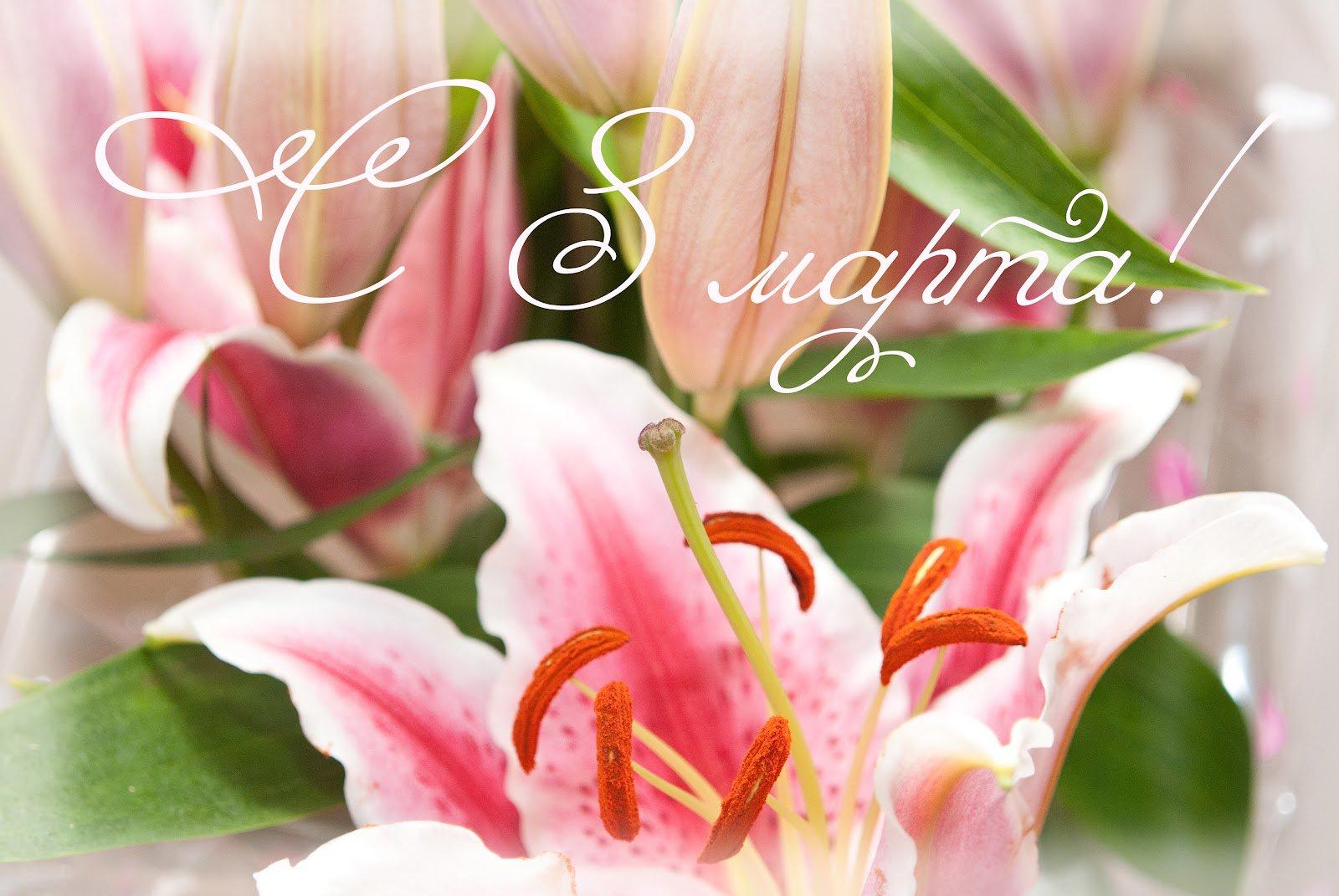 открытки на 8 марта с цветами лилиями построена