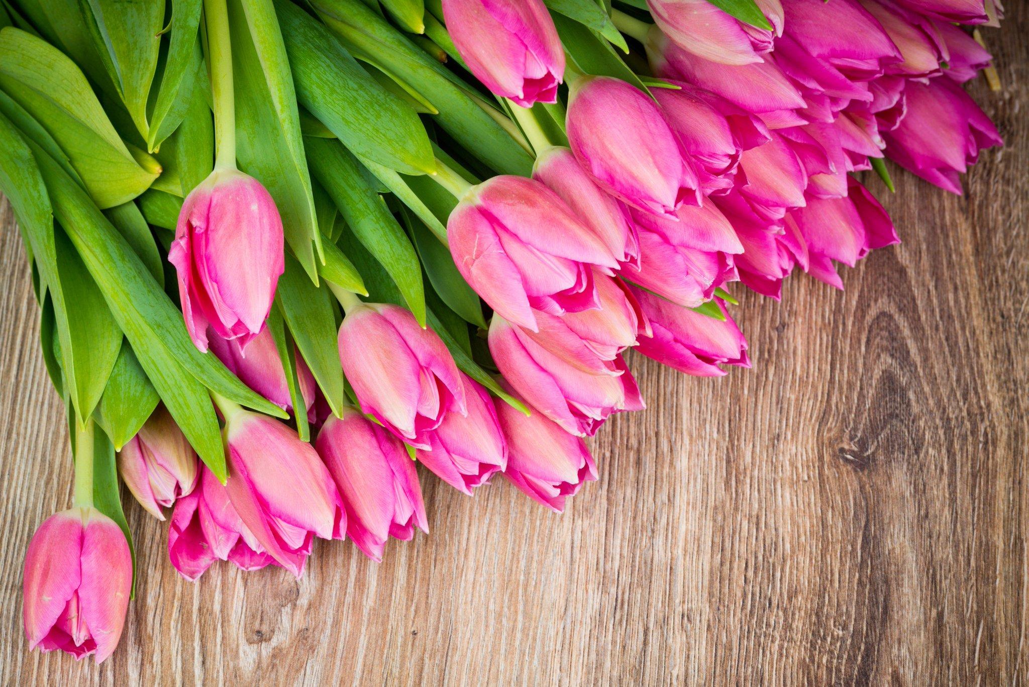 С весной открытка с тюльпанами, поздравлением