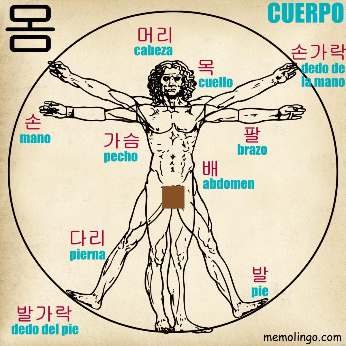 Curso de coreano on Twitter: \