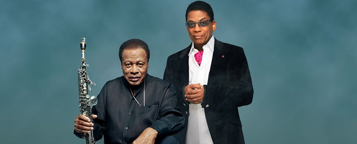 An open letter to the next generation of artists from Herbie Hancock and @Wayne_Shorter:  https://t.co/DDOZouIc4m https://t.co/p01yO0Ajp9