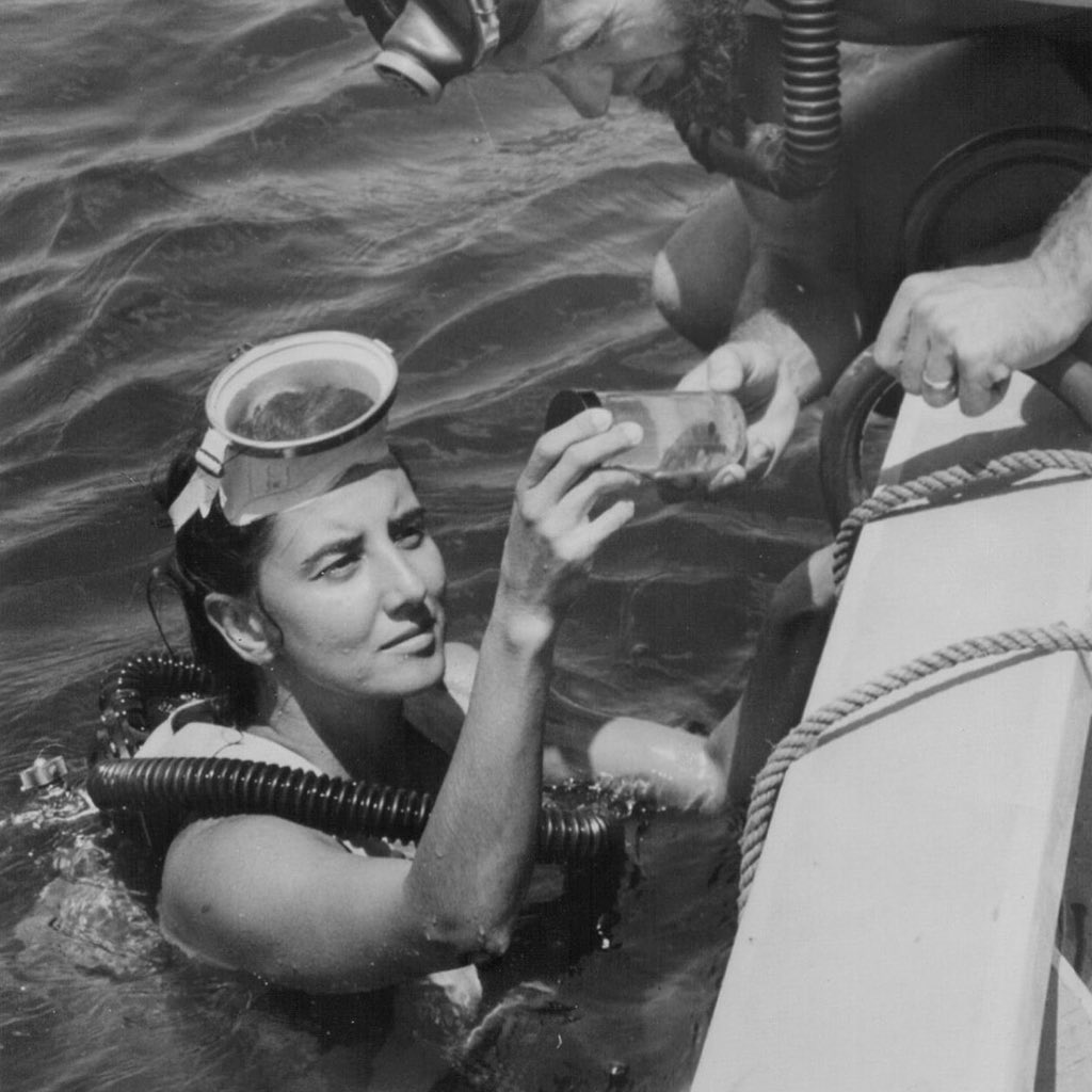We're celebrating #InternationalWomensDay in honor of our founder Dr. Eugenie Clark, the world renowned Shark Lady! https://t.co/cwnhkBdIzm