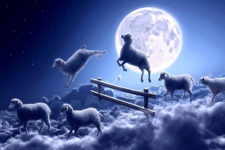 Bienvenidos al nuevo foro de apoyo a Noe #312 / 12.03.16 ~ 18.03.16 - Página 3 CdD5HHgWAAA_YBv