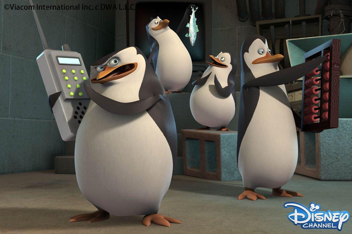 ペンギンたちの夢