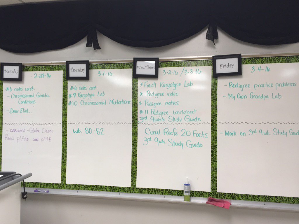 Workbooks quia workbook : Mrs. Grochowalski (@Cgrochowalski) | Twitter