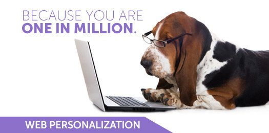 Everyone is one in a million. Doesn't #webpersonalization make sense?  #marketing https://t.co/qufjrf82XW https://t.co/uDlHRWrh6i