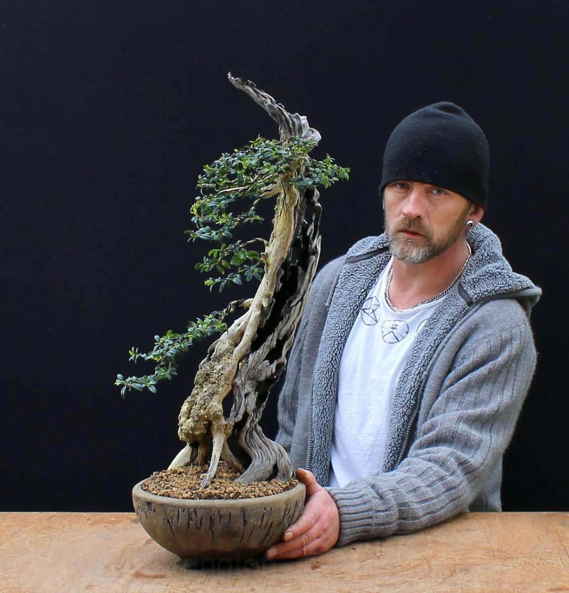 Harry Harrington On Twitter Me Pictured Alongside A Newly Styled Boxwood Bonsai Box Boxwood Deadwood Carving Styling Https T Co Ri2zllg1zl