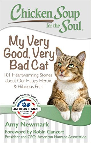 """Enter to win """"My Very Good, Very Bad Cat"""" Book - Super Easy Entry! https://t.co/fnJxO1Vdcp https://t.co/IVQHZTY7dr"""