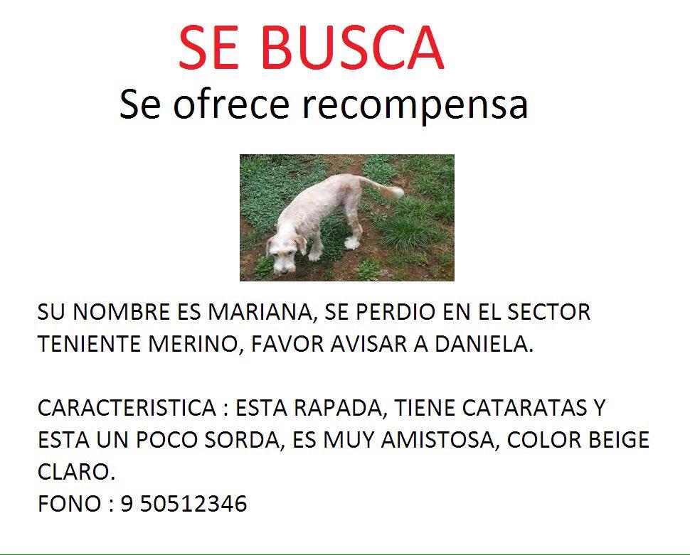 Mariana está perdida y su familia la extraña mucho. Ayudamos con un RT, dale? #ValdiviaCL