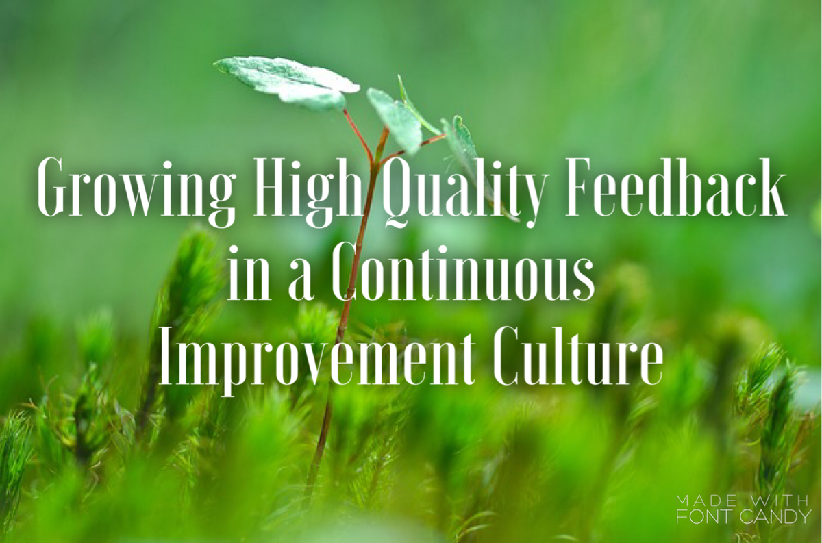 Thumbnail for Growing High-Quality Feedback in a Continuous Improvement Culture