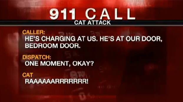 Today is the two-year anniversary of the time a cat held its family hostage in their bathroom. #NeverForget https://t.co/s0qOa4VmEZ