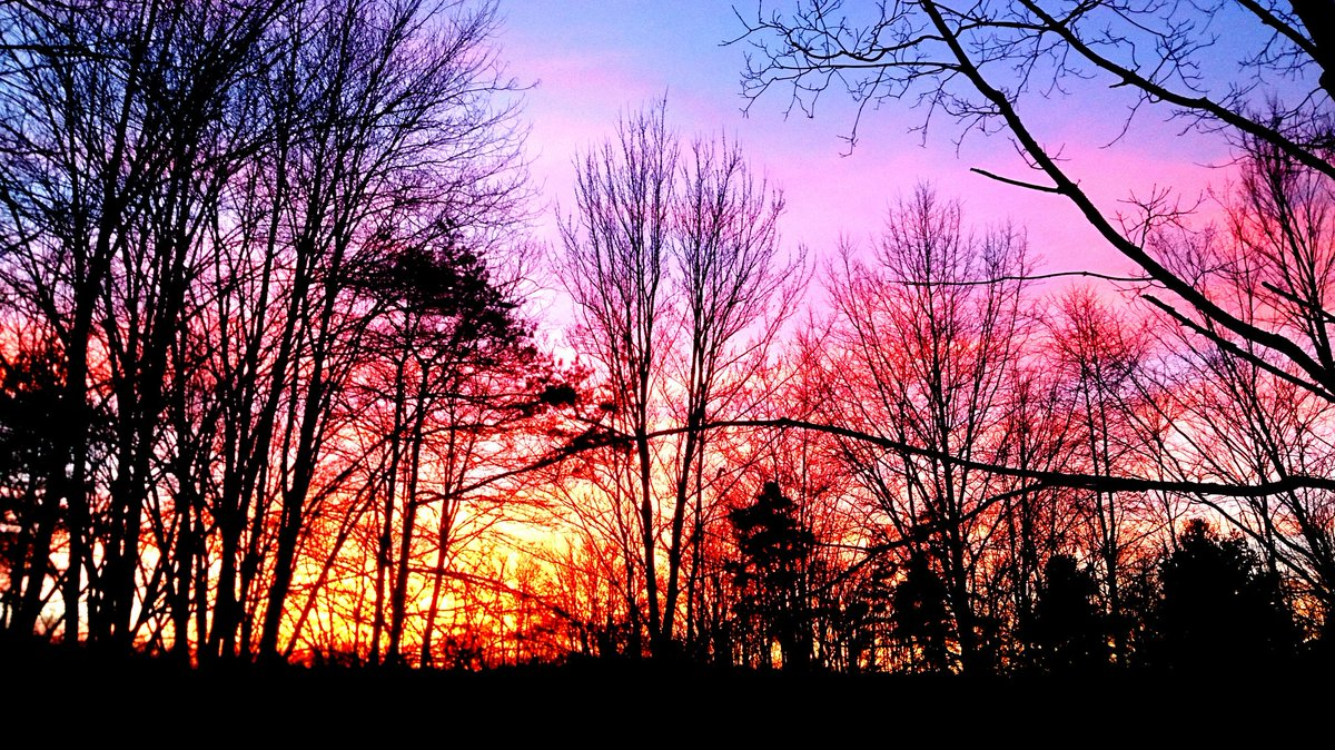 Sunset tonight is a blaze @JeffTanchak19 @JennHarcher @BetsyKling @GregDeeWeather @MarkJWeather @AndreBernier #ohwx https://t.co/j2DNw1inY4