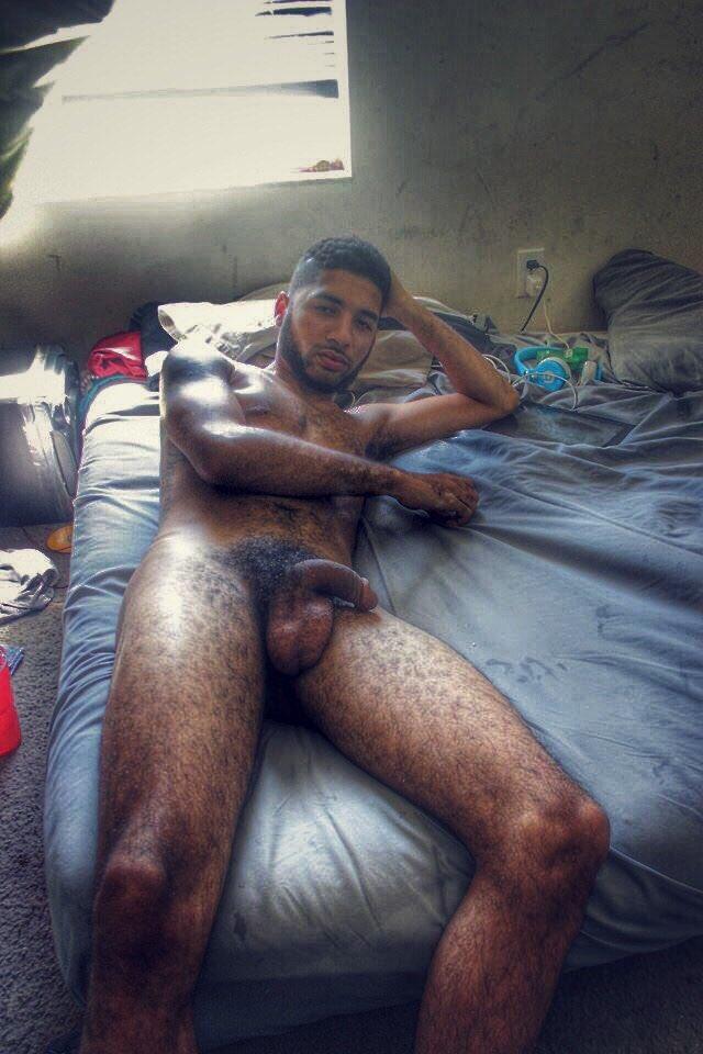 daddy poilu beur gay tube