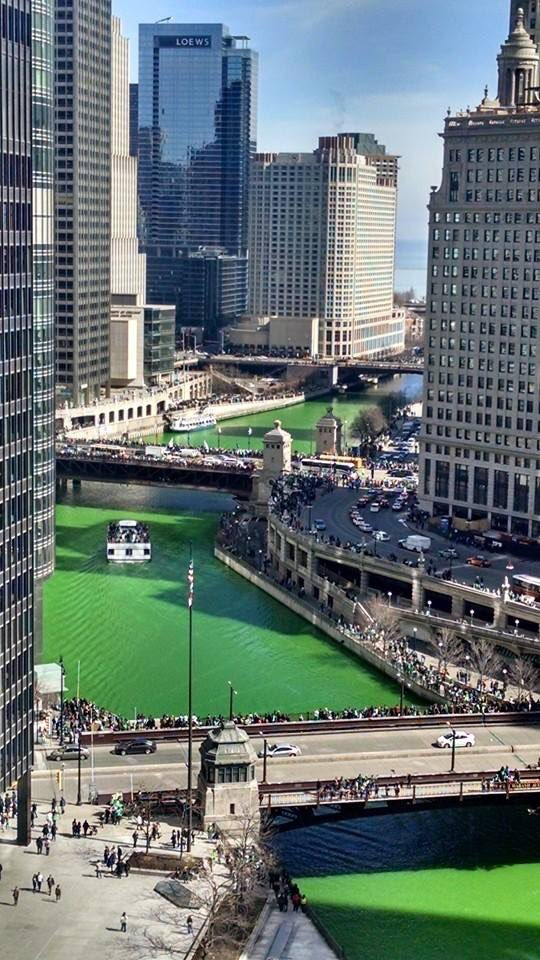 Dye me a river. Happy St Pat's parade day in Chicago! https://t.co/w3bMNNtt1Z