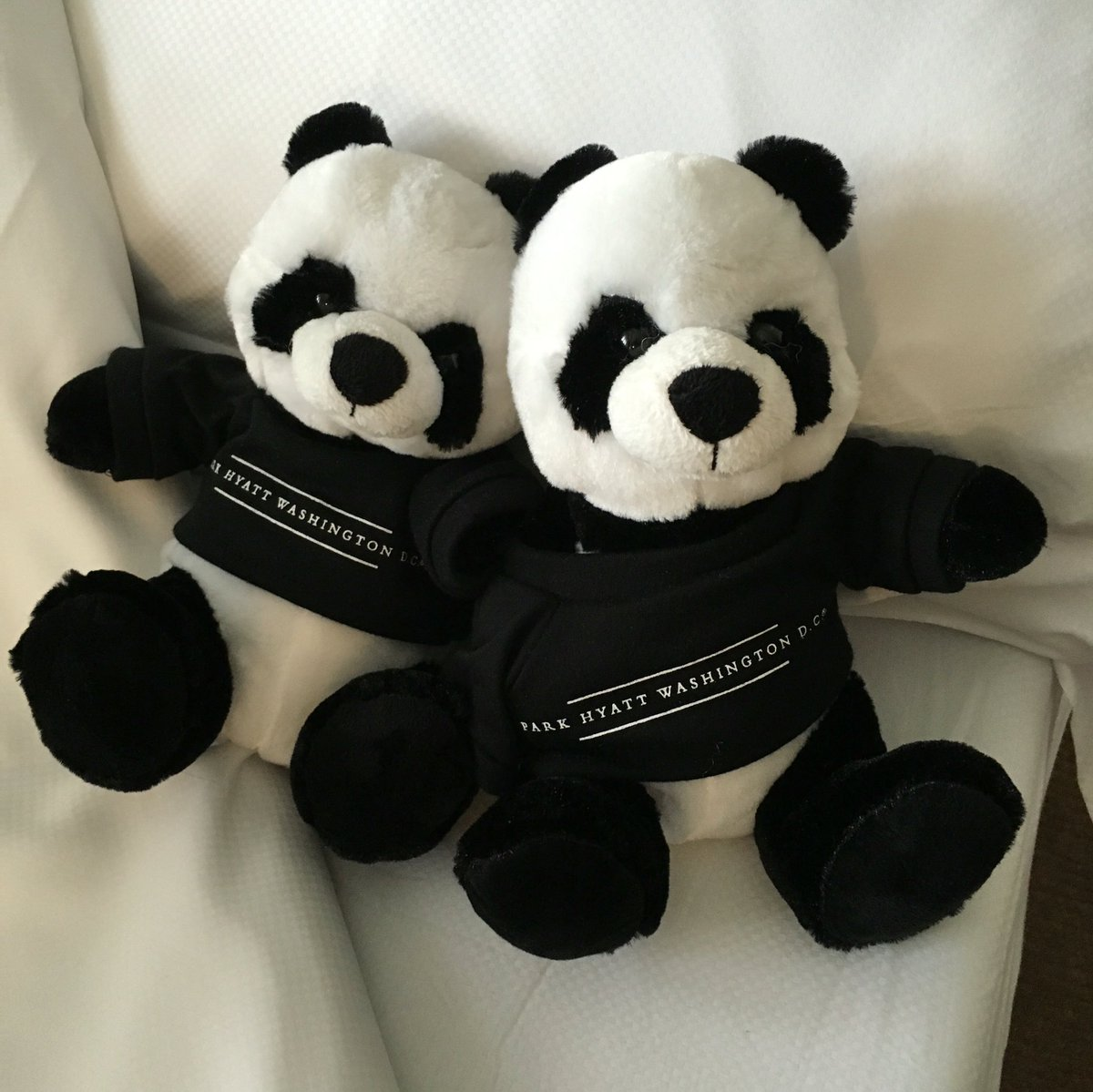 Pandas for the kids - nice touch. Thanks @ParkHyattDC! https://t.co/uW0zD8ngPW