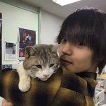 窪田正孝とネコの2ショット写真が可愛すぎて、女性陣キュンキュン♥♥
