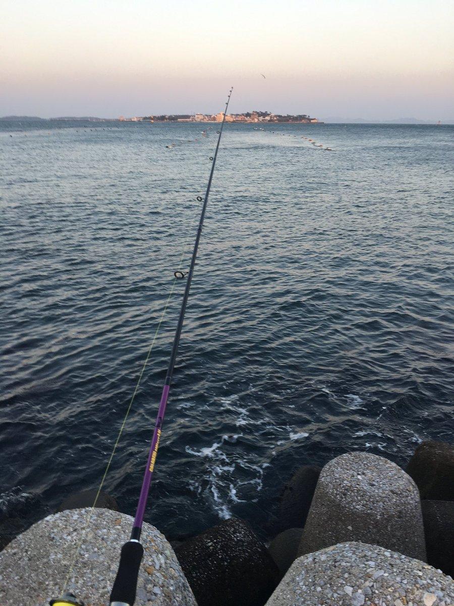 釣り スナメリ