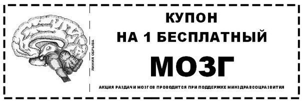 Украинских врачей не пустили к Надежде, они вернулись в Киев, - Вера Савченко - Цензор.НЕТ 3656