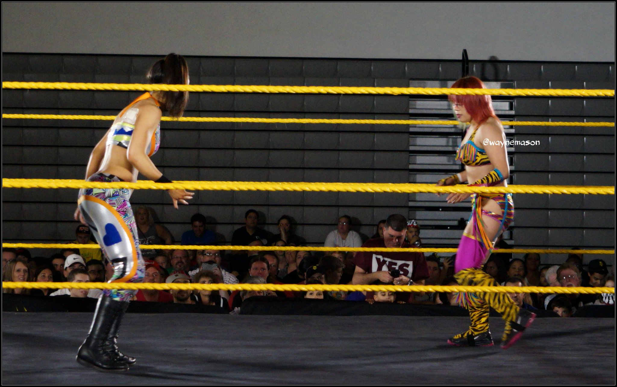 ASUKA tafka KANA Thread   Page 3   Wrestling Forum