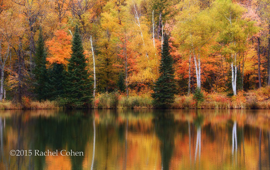 "From the blog: ""In Fog and Mist"" https://t.co/Dj9w2CYW5G https://t.co/BhR9o0ucdR #fallcolor #Michigan #Lakes #Reflections #photos"