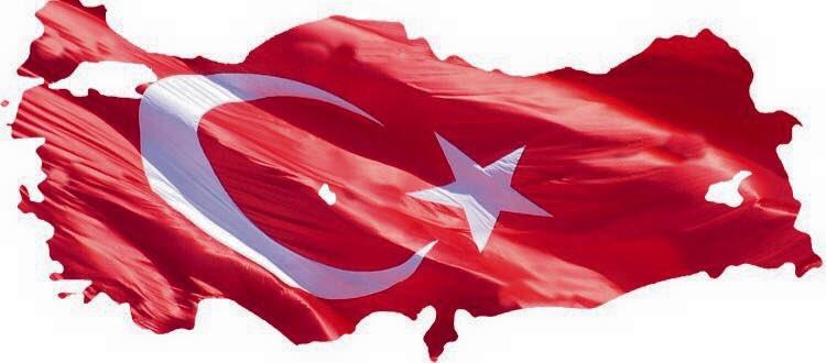 Rengini şehitlerimizin kanından alan bu bayrak tüm alçaklara ve hainlere rağmen ilelebet dalgalanmaya devam edecek.. https://t.co/4tUdCnKlwd