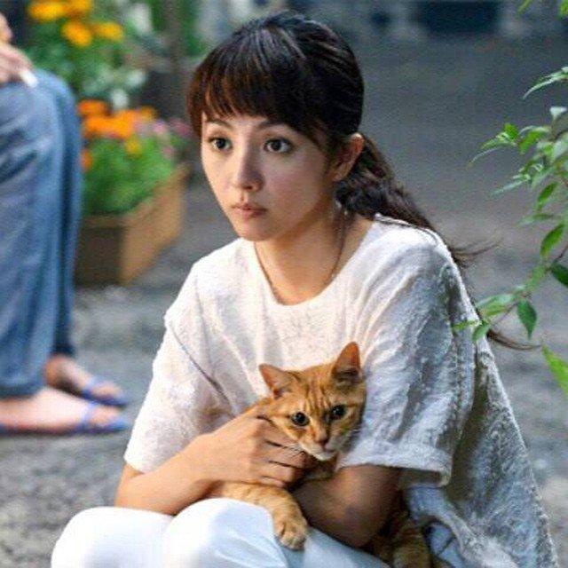 トラ猫を抱っこしている満島ひかりのかわいい画像