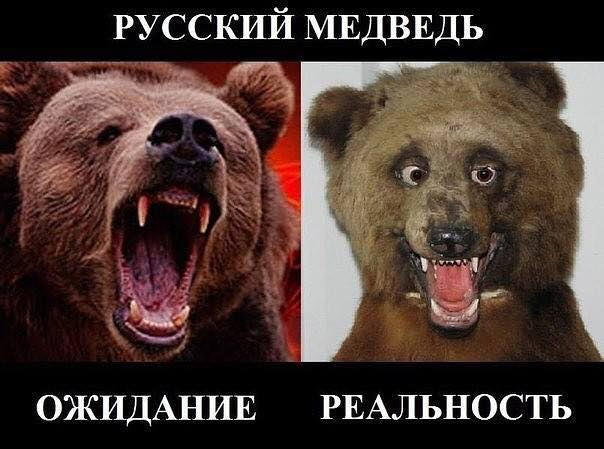 Назначение Ахметова и Бойко губернаторами на оккупированные территории ни разу не обсуждалось, - Ложкин - Цензор.НЕТ 7153