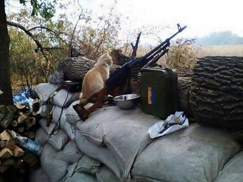 Вчера вечером боевики выпустили около 100 мин из 120 и 82-мм минометов по позициям ВСУ вблизи Новотроицкого, Зайцево и Троицкого, – штаб - Цензор.НЕТ 9980