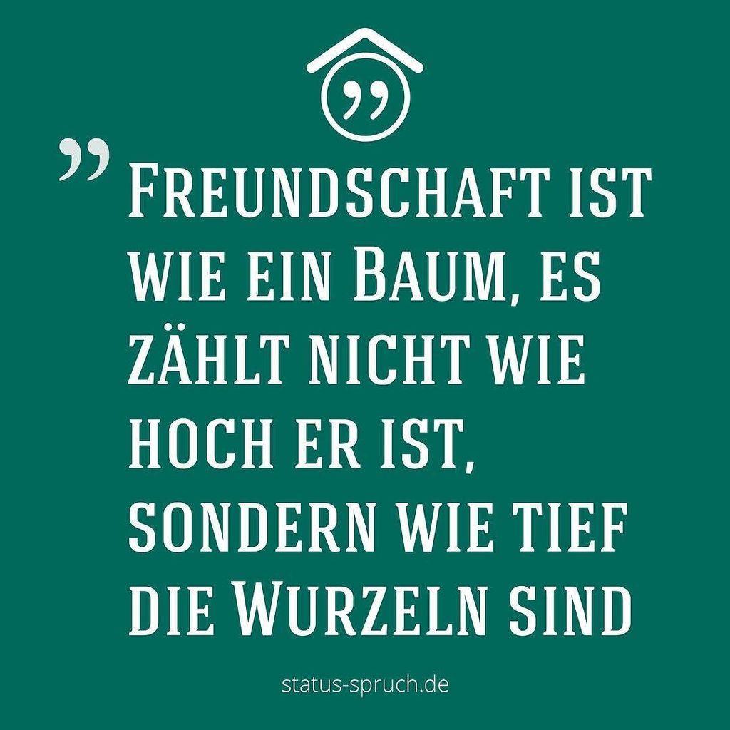 Status spruch.de on Twitter:
