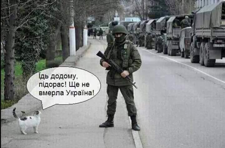 Путин прибыл на оккупированную Тузлу - Цензор.НЕТ 8771