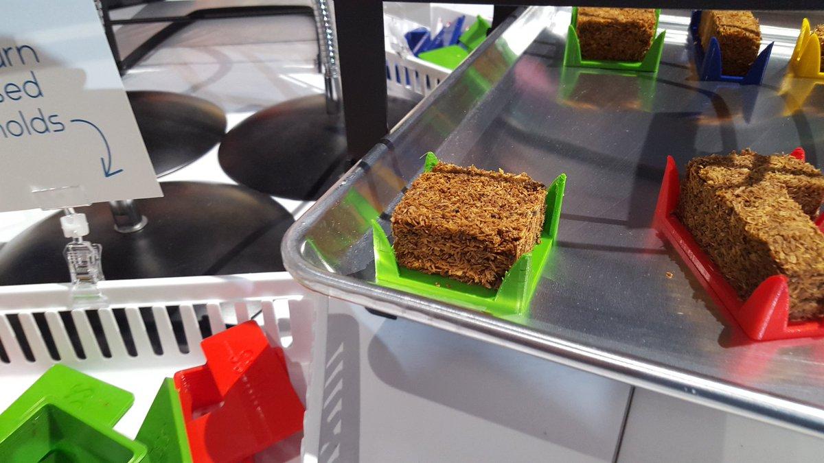 Making mushroom bricks @TheTechMuseum https://t.co/2eISfsvKsq