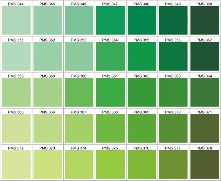 Tether on twitter anyone know the pantone number for leprechaun green - Vert canard couleur ...