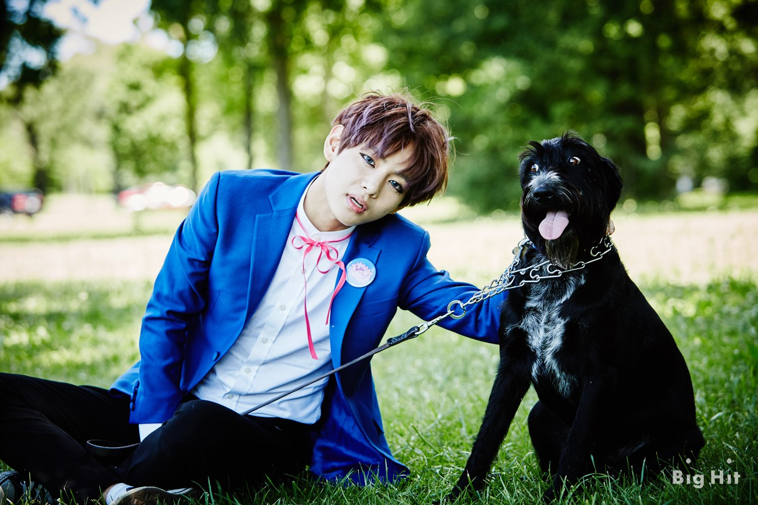 Interview trans releasing bts dreaming days chicago pictorial