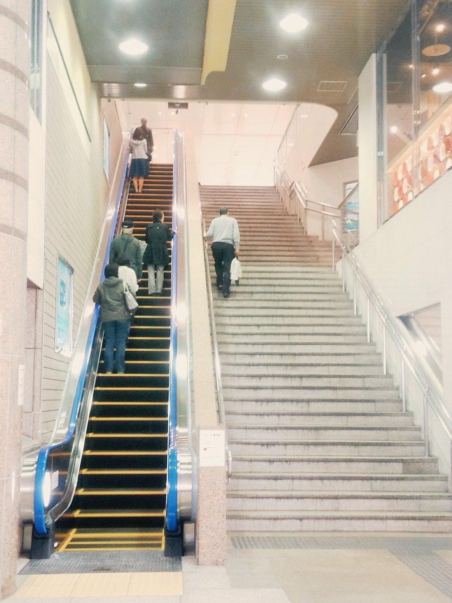 以前から停止していた茅ケ崎駅自由通路北側エスカレーターは、改修工事が完了しましたので、平成28年3月18日より運転を再開いたしました。この度はご利用者の方へご不便をおかけし、大変申し訳ございませんでした。 https://t.co/5FUCwYOzc1