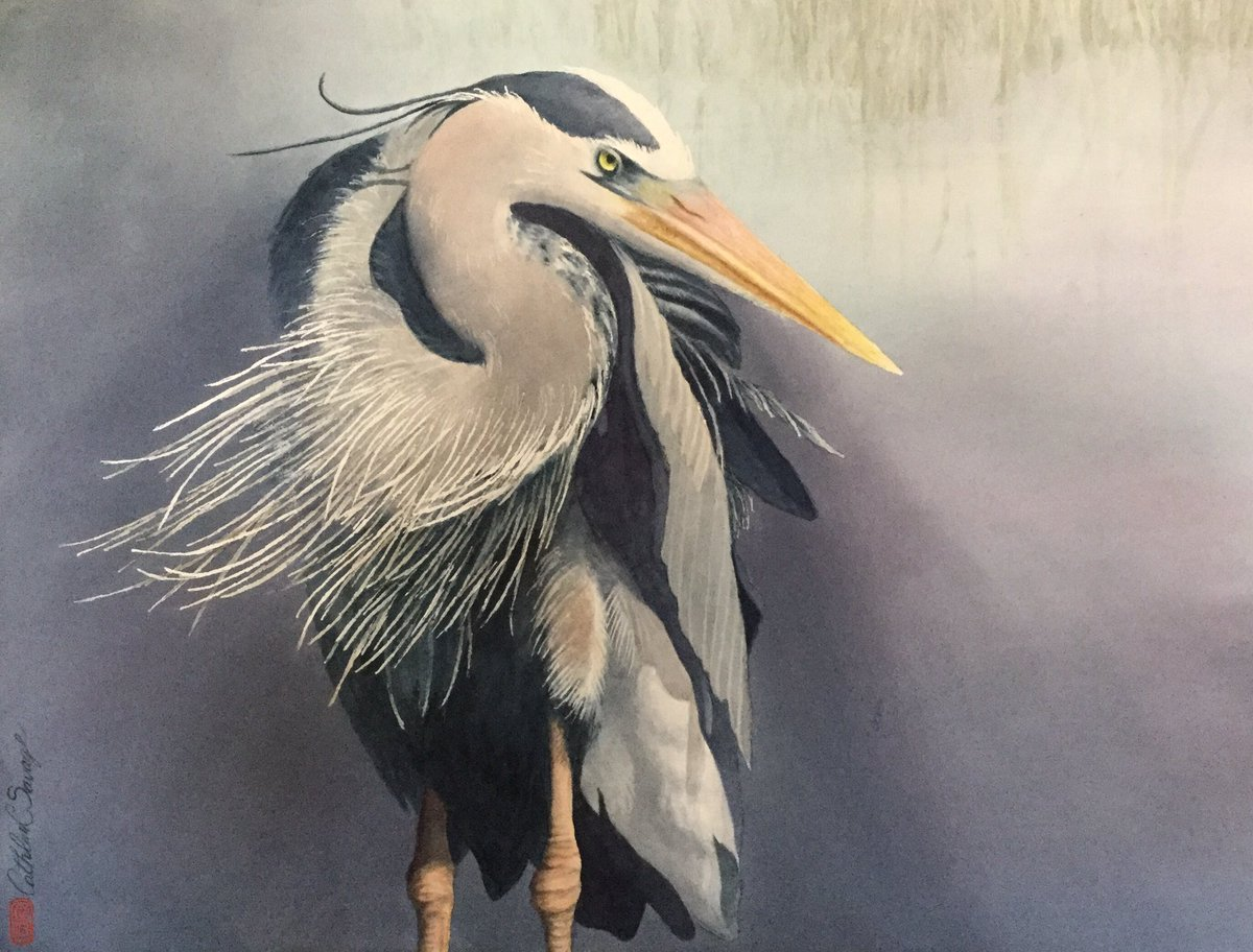 "Just finished! Marsh Heron (Great Blue Heron) 19"" X 25"" Watercolor on Arches 300 lb cold press https://t.co/BVeZjty2yr"