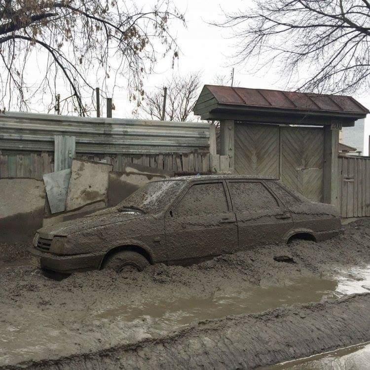 В оккупированном РФ Крыму новый карантин. Обнаружена болезнь Ньюкасла у птиц - Цензор.НЕТ 4019