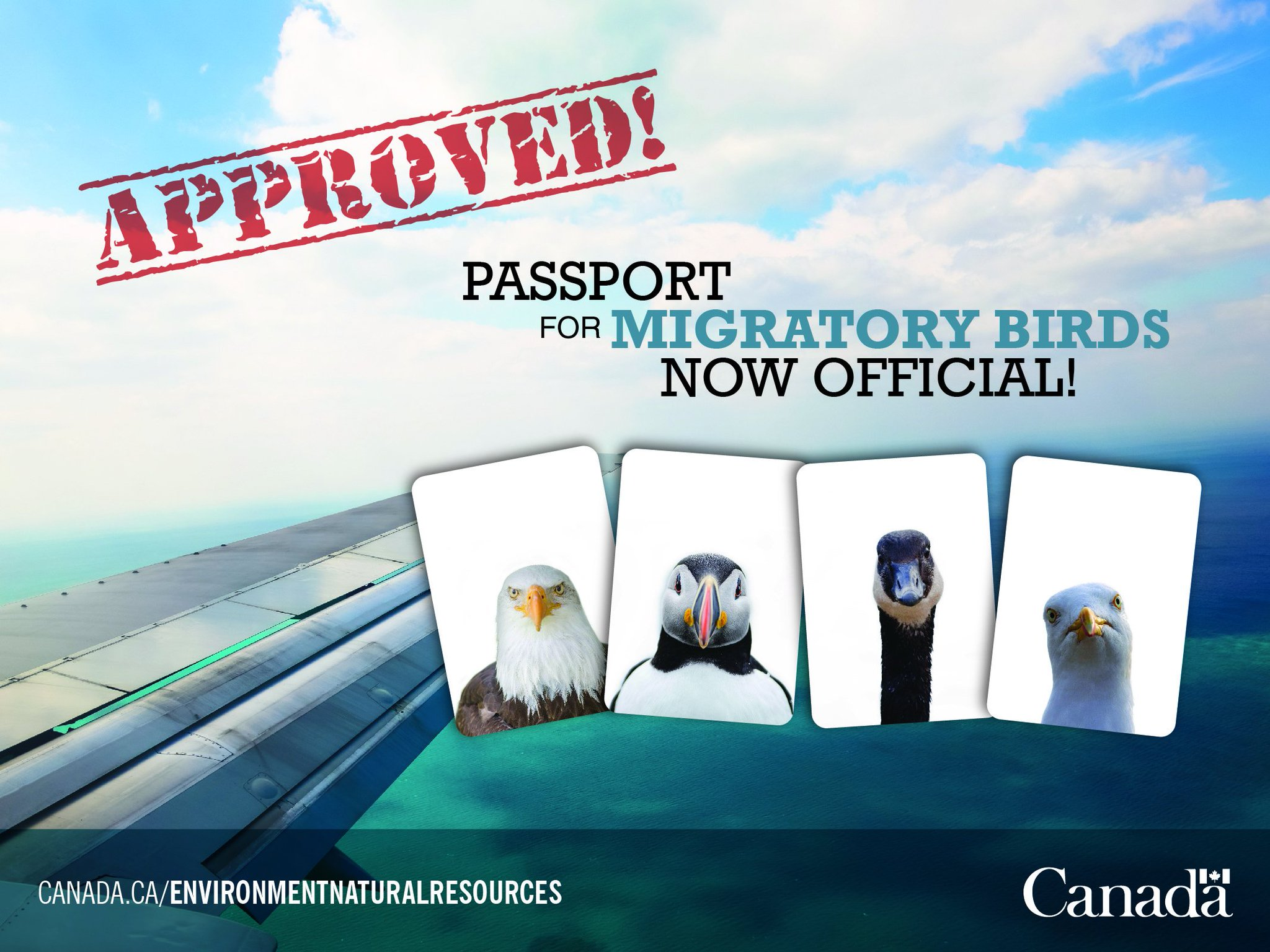 Pleased to announce new #passport for Migratory Birds. Thanks to @passportcan for helping.  #AprilFools #BirdYear https://t.co/1x14Vd6nMF
