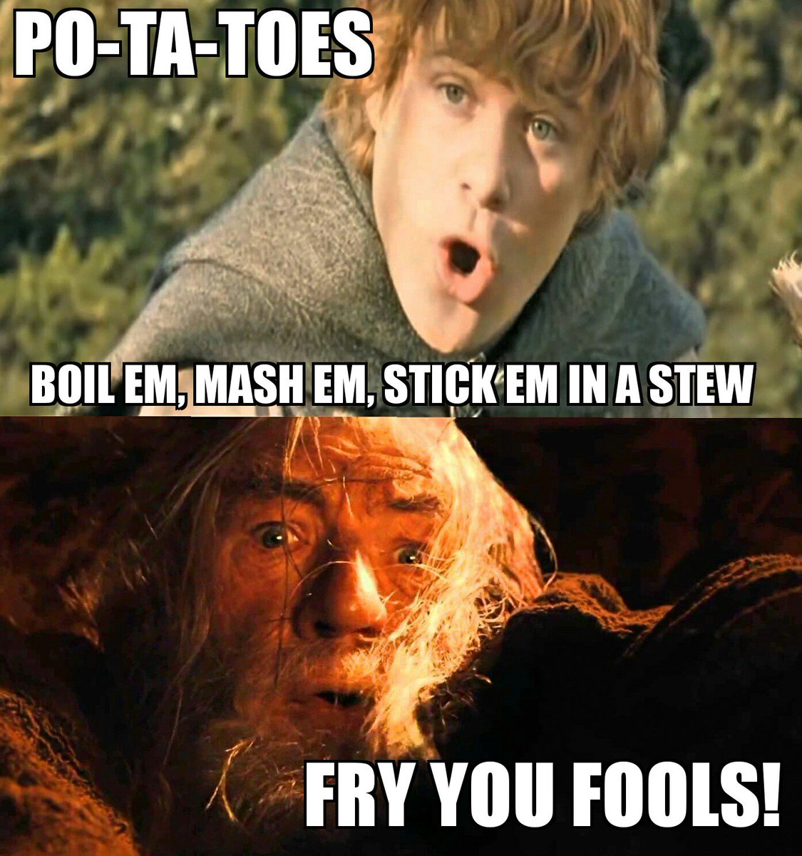 Qyotes From Lord Of The Rings